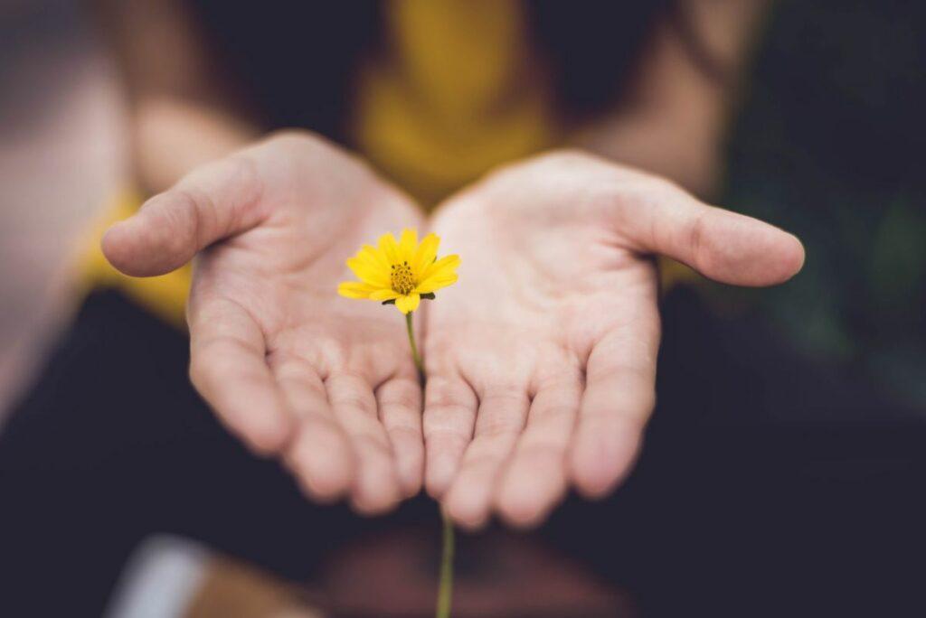 Mains fleur jaune